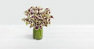 Stunning Deluxe Calla Lilies in a vase